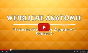 Kapitel - Weibliche Anatomie