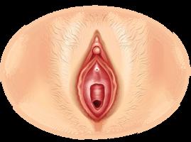 Vaginaler Orgasmus